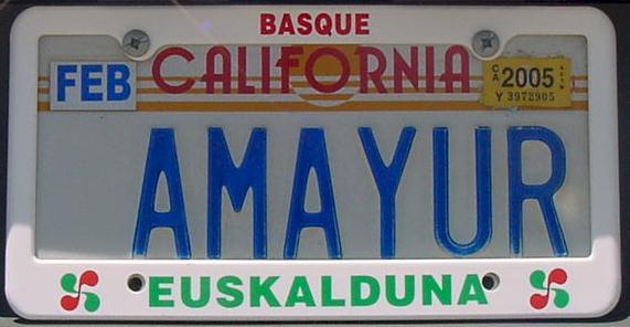 Basque Club Amayur-crop